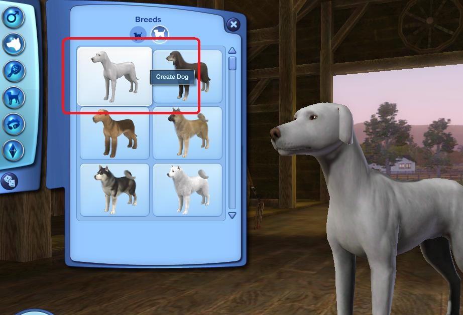 Pet Customization Dog1