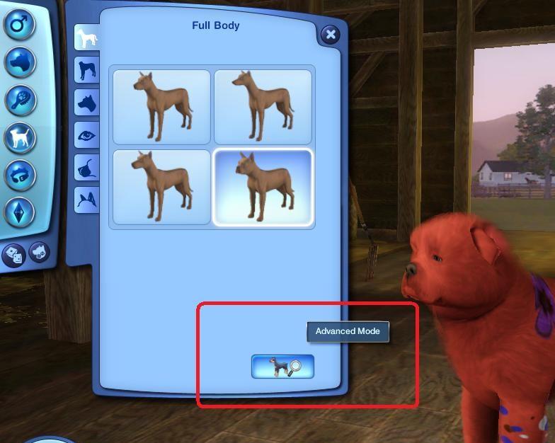 Pet Customization Dog10