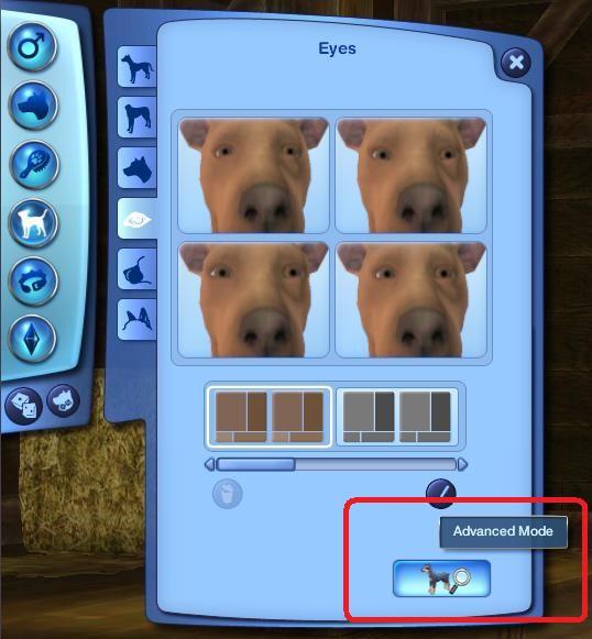 Pet Customization Dog15