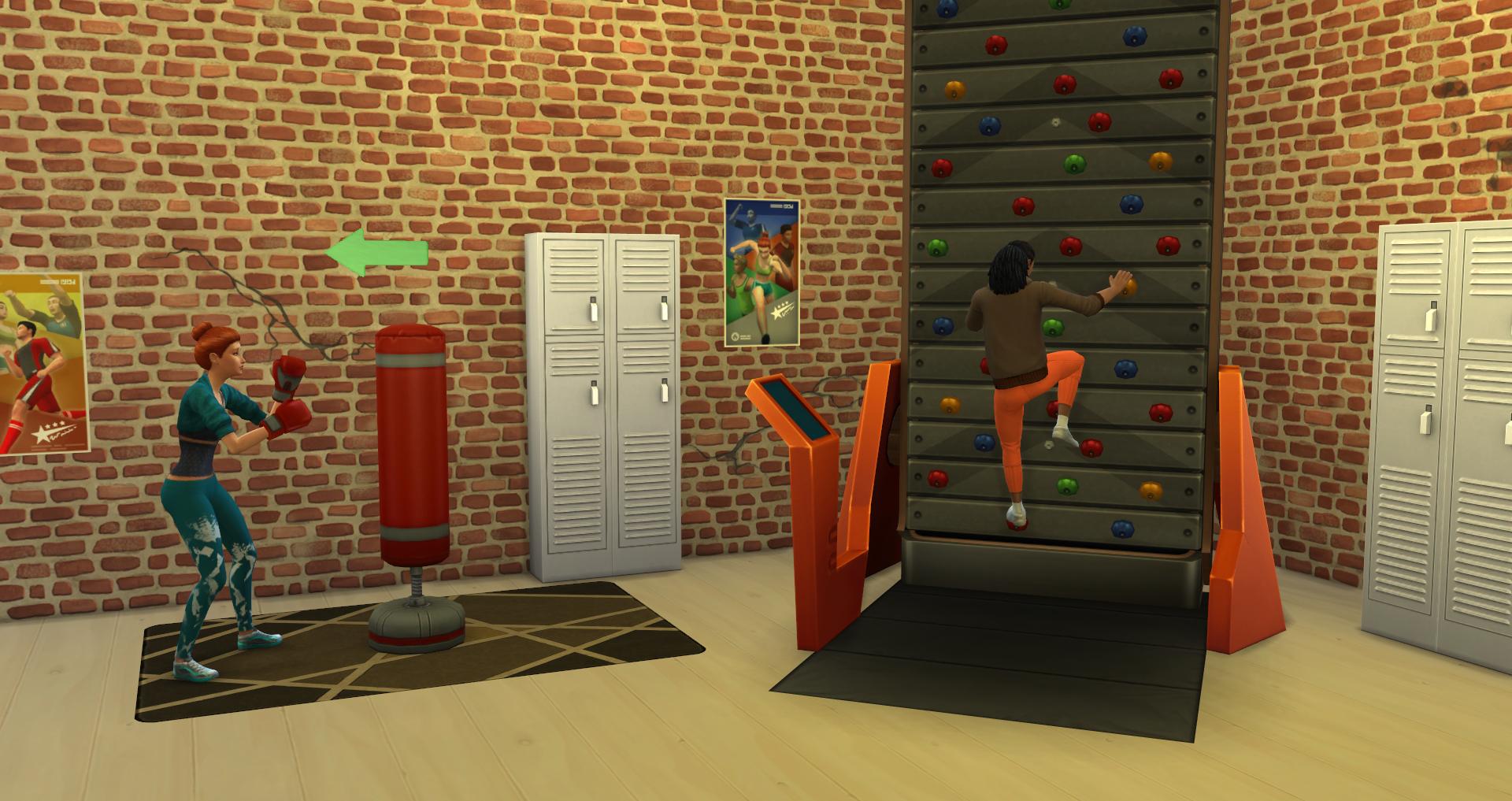 Výsledek obrázku pro the sims 4 fitness wall