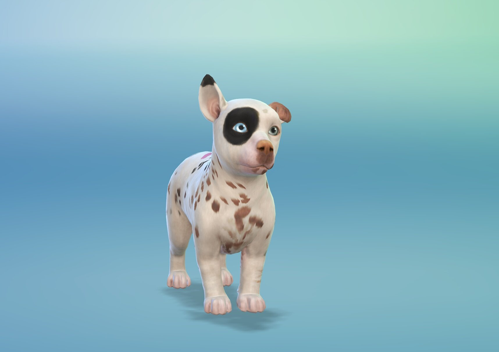 My Sims  Cats And Dogs