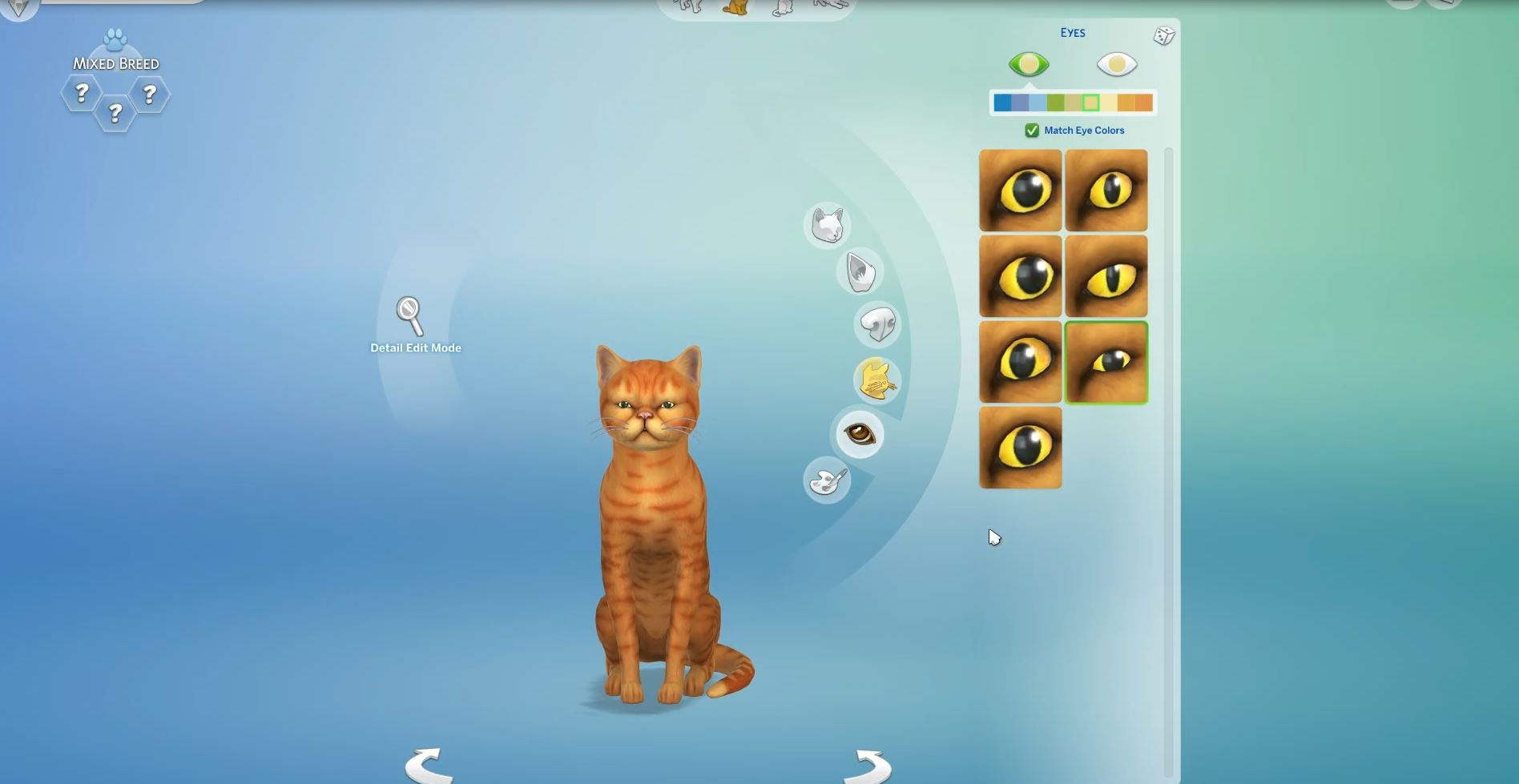The Sims 4 Cats & Dogs: First Look at Heterochromia for Pets | SimsVIP