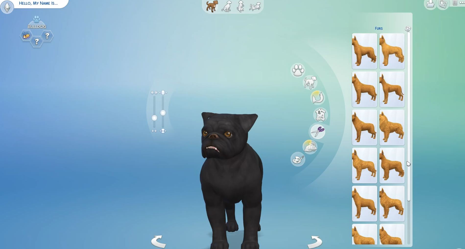 Sims  Cat And Dog World