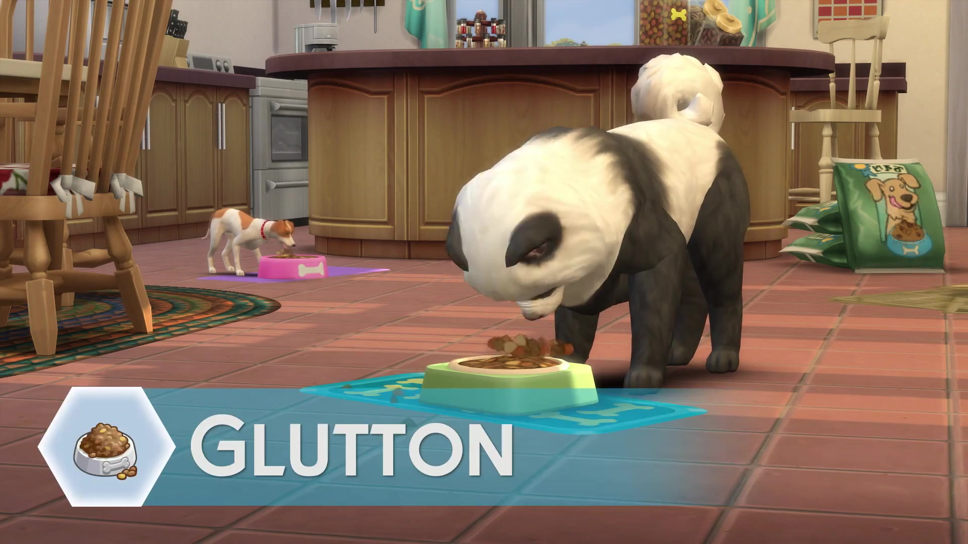 Origin  Off Sims Cats And Dogs
