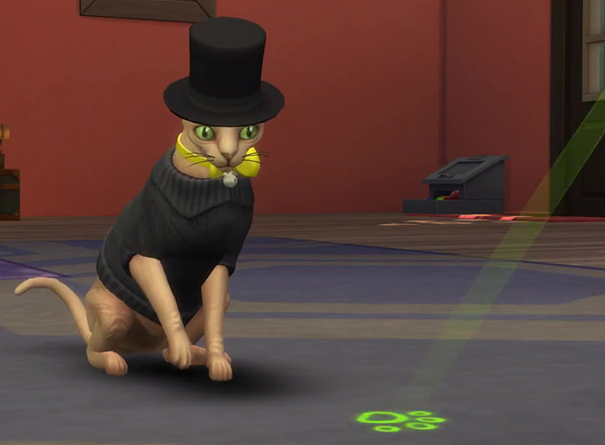 Sims  Cats And Dogs Life Spans