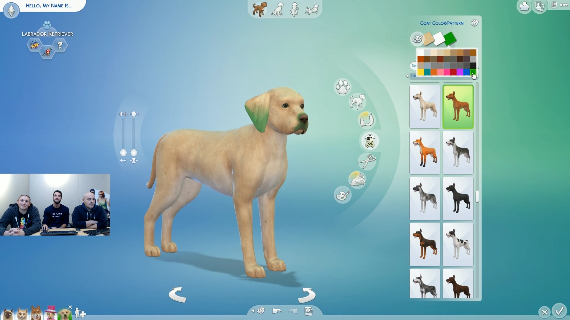 Sims  Change Gender Dog