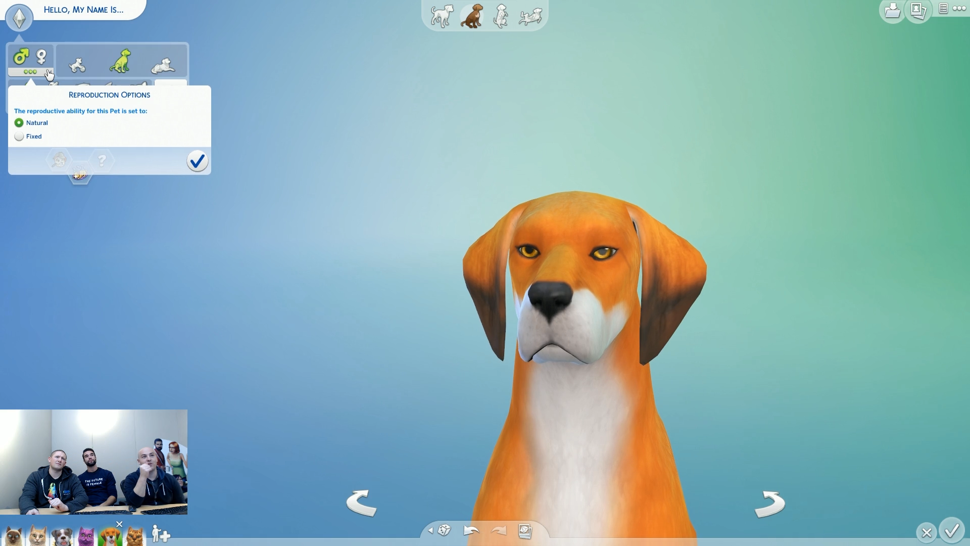 How To Adopt A Stray Dog In Sims
