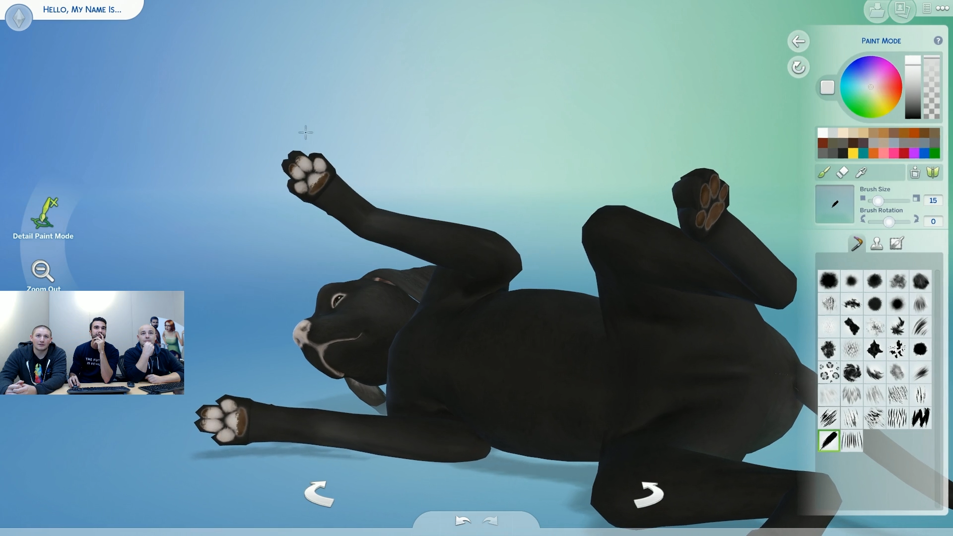 Sims  Cats And Dogs Pet Gender