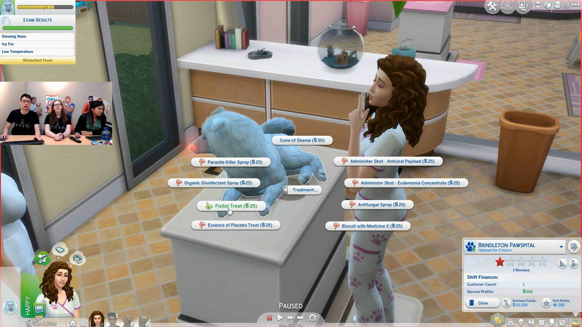 How To Give Treatment Sims  Cats Dogs