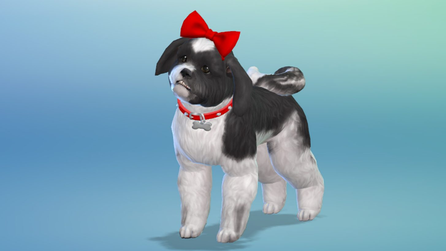 Can You Have A Dog In Sims